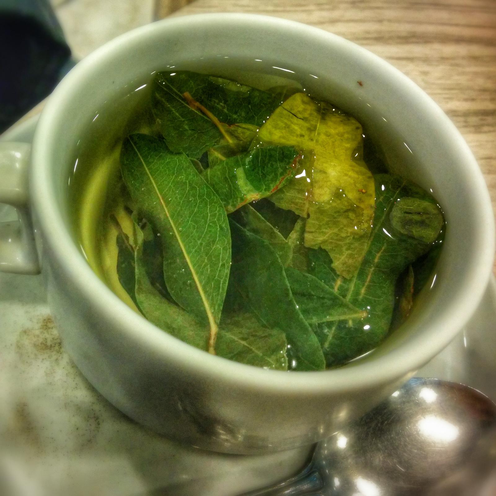 Una tazza di mate de coca con infusione di foglie