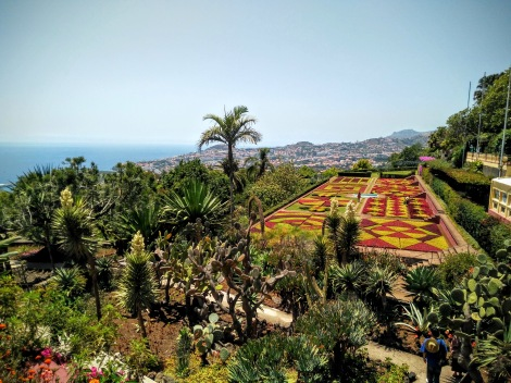 Madeira Jardim Botanico