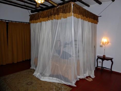 Malaria Zanzibar Kenya